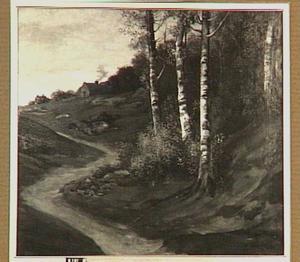 Landschap met berkebomen