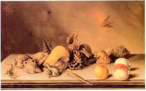 Stilleven met schelpen, fruit, hagedis en vliegende sprinkhaan