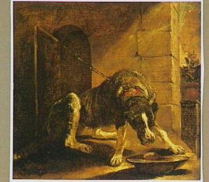 Kettinghond probeert uit schaal te eten
