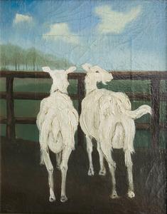 Twee witte geiten voor een hek