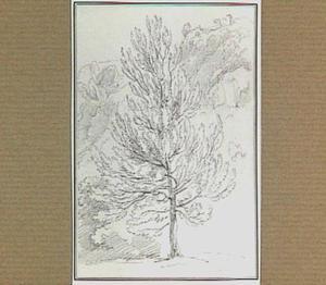 Rotslandschap met loofboom in de omgeving van Papigno