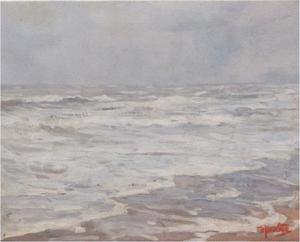 Ruwe zee - Noordzeestrand