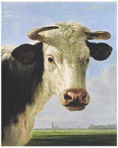 Een koeienkop voor een landschap met de Dordtse toren