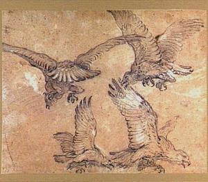 Vier roofvogels in de vlucht