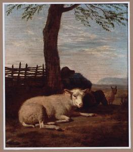 Slapende herder onder een boom met zijn dieren