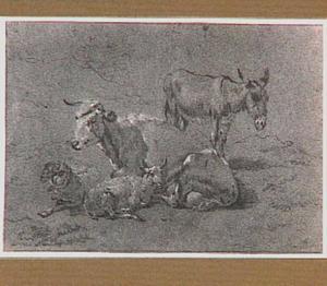 Een koe, twee schapen en een ezel