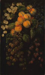 Fruitstilleven met abrikozen, sleedoorn en kruisbess