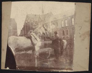 Werkpaard op het Eikenplein te Amsterdam