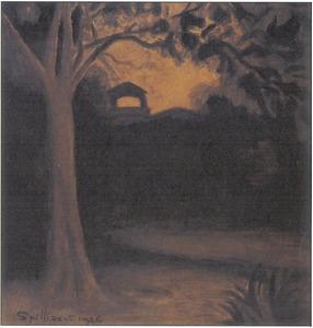 Leopoldpark bij avond