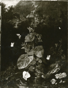 Stilleven met tuinmelde, paddestoelen, slangen en vlinders