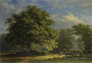 Gezicht in het Bentheimse bos