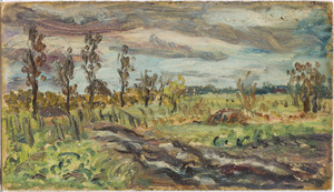 Landschap in Het Gooi (streek)