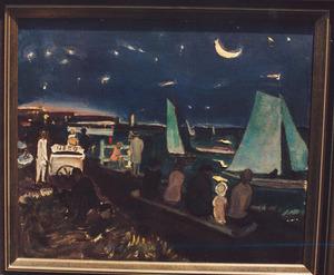 De Nieuwe Meer bij avond