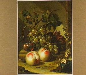 Druiven, perziken en granaatappels op een stenen rand