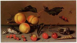 Stilleven met abrikozen, een aardbei, rode bessen en kersen, schelpen en insecten