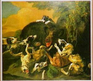 Een wild zwijn, aangevallen door honden