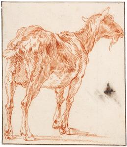 Een geit
