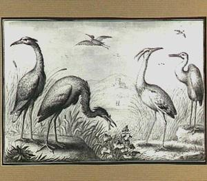 Heuvellandschap met vogels bij een rivier