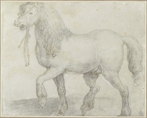Het paard Juliacus