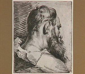 Kop van een man met baard, naar rechts