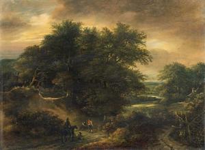 Bebost heuvellandschap met wandelaars op een karrenspoor
