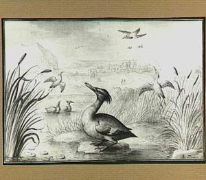 Rivierlandschap met vogels