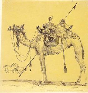Volledig opgetuigde kameel met twee paarden