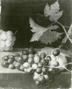 Stilleven met druiventros en wijnrank