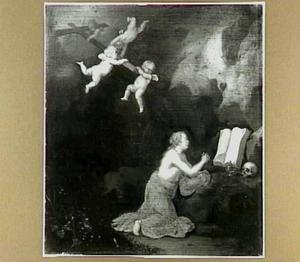 De boetvaardige Maria Magdalena in een grot