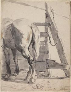 Paard, gezien op de rug