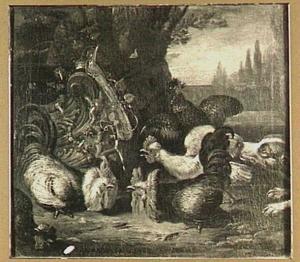 Hoenderhof met rechts hond die op de kippen jaagt