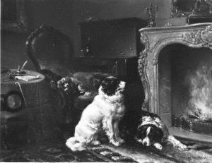 Honden voor een haardvuur