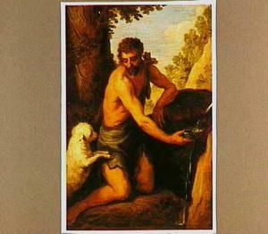 Johannes de Doper in de woestenij