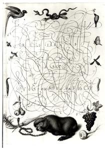 Slapende aap aan ketting, vruchten, vogels en insecten