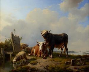 Runderen en schapen in een weilandschap bij een rivier