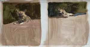 Twee studies van een liggende wilde hond