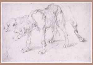 Staande hond met alternatief voor kop en achterpoten, naar links