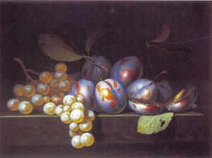 Vruchtenstilleven van druiven en pruimen op een stenen richel