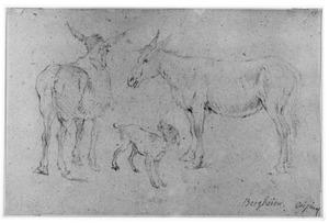 Twee ezels en een hond