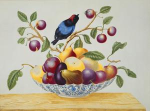 Porseleinen kom met vruchten en prachtmanakin op een houten blad