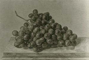 Druiventros op een marmeren blad