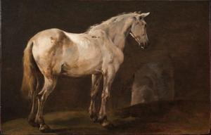 Wit paard in een grot