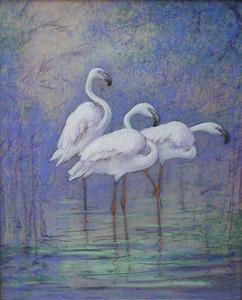 Drie Flamingo's in het water