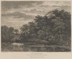 Beboste heuvels bij een vijver