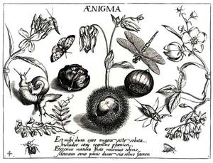 Kastanje, bloemen, slakken en insecten