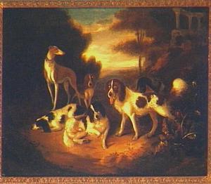 Zes jachthonden in een boslandschap, met een ruïne in de achtergond