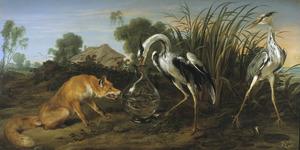 De vos bezoekt de reiger