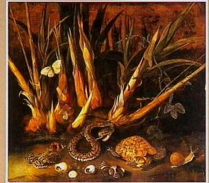 Rietsuikerstengels met reptielen en amfibieën