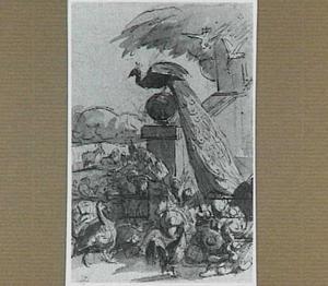 Pauw en andere vogels bij een trap, met in de achtergrond vee