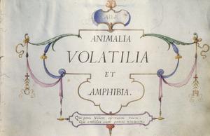 AIER/ANIMALIA/ VOLATILIA/ ET/ AMPHIBIA